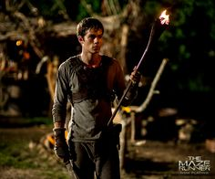 Dylan as Thomas in The Maze Runner - Dylan O'Brien Photo (37612679) - Fanpop
