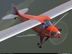 Piper J-5A Cub Cruiser aircraft picture