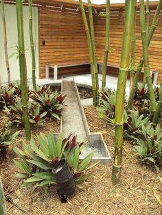 SQLA Inc. // Lido Building Commercial Landscape Design, Water Features, Building, Plants, Water Sources, Buildings, Plant, Backyard Ponds, Water Toys