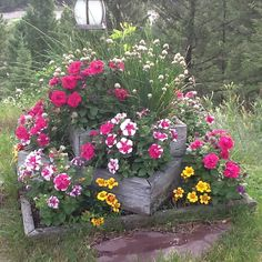 Beautiful outdoor display.