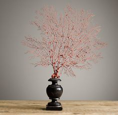 """Restoration Hardware - Andaman Coast Red Sea Fan $119 We've captured the rare red sea fan in all its lacy intricacy, staining a sustainably harvested natural sea fan red to resemble the protected endangered species while celebrating its beauty. Found off the coast of Thailand, each one is unique and showcased on a turned wood stand.     Approx. 9""""-14½""""W x 2¾""""D x 20""""H"""