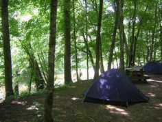 Fox Fire Riverside Campground  East Tennessee - Riverside camping on the Pigeon River