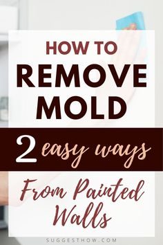 Mold on the painted wall threatens the health of your family living in the home and ruins the appearance of the wall. To restore the beauty of the wall and create a healthy home, knowing how to remove mold from painted walls is essential. Removing the mold can be an easy task if you follow some steps correctly. #DIY #cleaning #homehacks#diytips Deep Cleaning Tips, Cleaning Walls, Bathroom Cleaning, Remove Mold, Concrete Block Walls, Painted Walls, Housekeeping, Simple Way, Restore