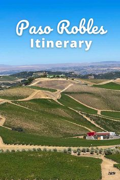 Paso Robles Itinerary: Where to wine taste, Eat, Stay & More   TTWT California Travel Guide, California Beach, Dog Friendly Hotels, Worldwide Travel, Napa Valley, Wine Country, Hot Springs, Wine Tasting, Day Trip
