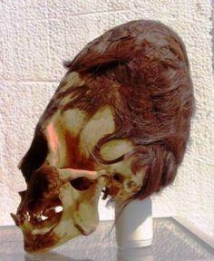 Удлиненный череп не принадлежит человеку