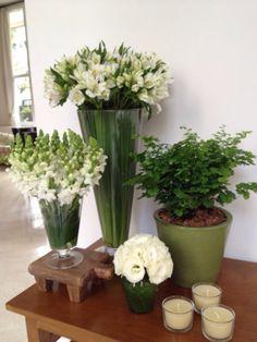 Bambu Flores- Branco e Verdr