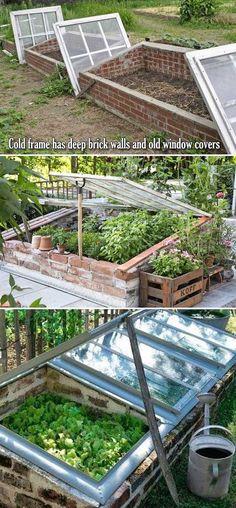 Cold Frame Gardening, Urban Gardening, Organic Gardening, Small Gardens, Outdoor Gardens, Potager Bio, Garden Beds, Balcony Garden, Brick Garden