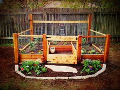RAISED BED ORGANIC VEGETABLE GARDEN
