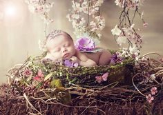 Image result for Berry Fairy BAby photography