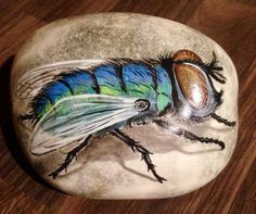 Hand painted rock fly by cobblecreatures on etsy, Pebble Painting, Pebble Art, Stone Painting, Mandala Painted Rocks, Hand Painted Rocks, Stone Crafts, Rock Crafts, Pierre Decorative, Love Birds Painting