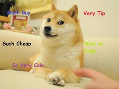 The #Dogecoin Price is Low, and That's Crazy #DOGE #altcoin #litecoin #scrypt