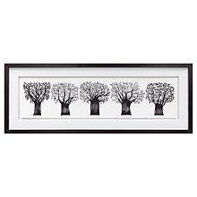 Buy Charlene Mullen - Forest Of Trees, Framed Print, 39 x 103cm Online at johnlewis.com
