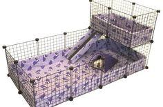 Guinea Pig Kafesi ve Gereçleri