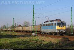 RailPictures.Net Photo: 163 Hungarian State Railways (MÁV) 431 / ex-V43 at Békéscsaba, Hungary by Máté Szilveszter