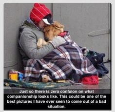 Mans bestfriend. Dog are Not something we just get to through in a cage or chain outside for the rest of their lives. Their meant for people with the time, and the affection to give.