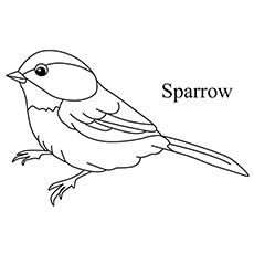 Birds are one of the most lovable animals in the world especially by children. Here we bring you amazing collection of 20 free printable bird coloring pages Hand Embroidery Patterns Free, Embroidery Stitches Tutorial, Embroidery Flowers Pattern, Bird Embroidery, Bird Coloring Pages, Fairy Coloring, Kids Coloring, Colouring, Bird Drawings