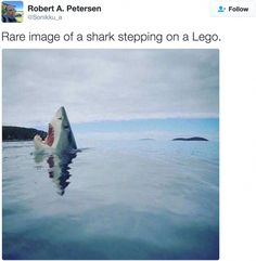 12Tweets That Will Lift Your Mood toaWhole New Level