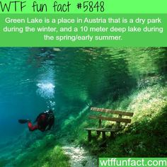 There is a place in Austria that is a dry park in the Winter, and a deep crystal clear lake in the summer. This is the underwater park of Green Lake in Tragoess, Styria, Austria Green Lake Austria, Places To Travel, Places To See, Destination Voyage, Wtf Fun Facts, Awesome Facts, Strange Facts, Random Facts, Interesting Facts