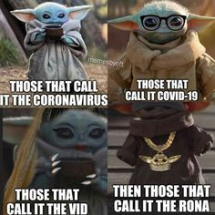 Yoda Funny, Yoda Meme, Funny Memes, Hilarious, Jokes, Yoda Speak, Yoda Images, Funny Expressions, Star Wars Baby