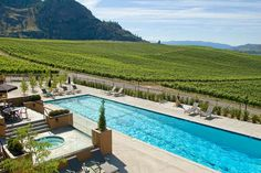 resort overlooking the expansive fields of grapes in the Okanagan Valley, BC, Canada Cool Places To Visit, Places To Go, Lakeside Beach, Canada Pictures, O Canada, Largest Countries, Wine Festival, Travel News, Burrowing Owl