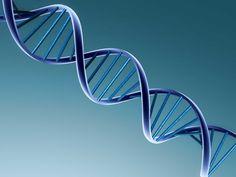 Investigação clínica com ajuda tecnológica