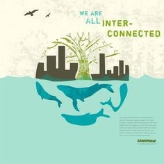 Greenpeace poster on Behance