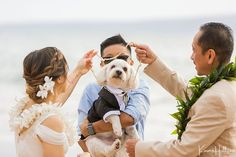 @simplemauiwed posted to Instagram: A lei for your furry guest of honor? Absolutely we can help you with that! We love that Mari-June and Roy honored their littlest family member during their #mauivowrenewal  📷: @karmahill Maui Team 💐: @dellablesfloraldesign Bride: @ma_rae  #mauiwedding #simplemauiwedding #mauiweddingplanner #hawaiiwedding #karmahillphotography #beachwedding #destinationwedding #mauibeachwedding #hawaiiweddingplanner  #destinationweddingphotographer #mauidestinati Maui Weddings, Hawaii Wedding, Beach Wedding Inspiration, View Image, Destination Wedding Photographer, June, Bride, Couple Photos, Dogs