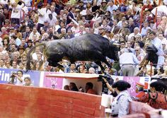 Went flying through the air, true to its name: bird. He entered the ring at full speed and headed direct to the alley to jump up to the first seats. It was the first bull to do so in 60 years of the Plaza Mexico. In just two minutes, more than 500 kilos of the animal left seven injured who required hospitalization and dozens of fans with abrasions and bruises. The race ended with his sacrifice. Photo: File the Jornada