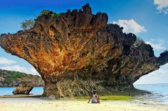 Rote Island Indonesia. WowShack | 10 Indonesian Island Getaways You Need to Explore