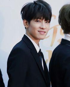 Seventeen Wonwoo Golden Disk Awards 2018