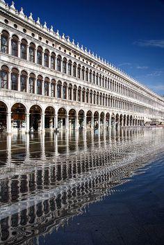 Venice - Iggi Falcon