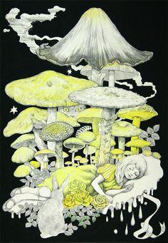 Yuko Higuchi Vampire Illustration, Illustration Artists, Cat Sketch, Mushroom Art, Goth Art, Artwork Display, Art Base, Psychedelic Art, Artist Art