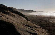 California Coastline waiting for the SUNSET in San Luis Obispo