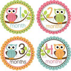 Baby Owl Monthly Onesie Stickers - Emma - Pink Green Orange Blue on Etsy, $8.99