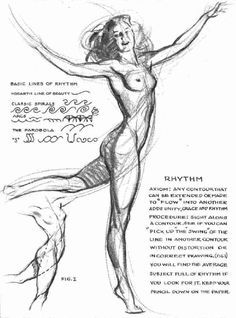 Art by Andrew Loomis* • Blog/Info | (https://en.wikipedia.org/wiki/Andrew_Loomis) ★ || CHARACTER DESIGN REFERENCES™