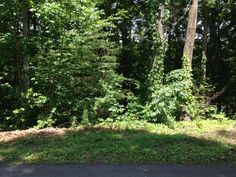 Lake Access Lot for Sale at Toqua Point
