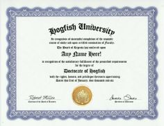 Hogfish Degree: Custom Gag Diploma Doctorate Certificate (Funny Customized Joke Gift - Novelty Item) by GD Novelty Items. $13.99. One customized novelty certificate (8.5 x 11 inch) printed on premium certificate paper with official border. Includes embossed Gold Seal on certificate. Custom produced with your own personalized information: Any name and any date you choose.