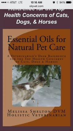 Essential Oils for Natural Pet Care