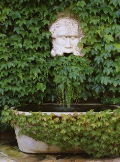 Boston Ivy clad walls & fountain. Skurman.com - Mediterranean - A Hillside Villa