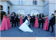 Spring winery wedding at Casa Larga Vineyards Wedding Images, Wedding Ideas, Vineyard Wedding, Bridesmaid Dresses, Wedding Dresses, True Love, Got Married, Real Weddings, Groom