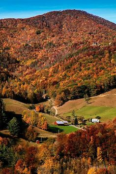 October In Chattanooga, Tennessee Chattanooga Tennessee, East Tennessee, Great Places, Places To See, Beautiful Places, Autumn Scenery, Autumn Trees, Sea To Shining Sea, Lombok