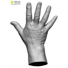 HandScan03_spread2-700x700.jpg (700×700)