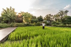 L49-MingMongkolPark-08 « Landscape Architecture Works | Landezine