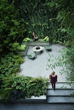 Full on greenery in a courtyard garden of a townhouse designed by Rees Roberts and Partners