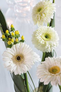 Close-up of a white gerbera bouquet   on a white plate #whitegerberas #inspiration #colouredbygerbera #dutchgerbera