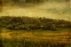 Baraboo Hills by LastBestPlace.. Great image!