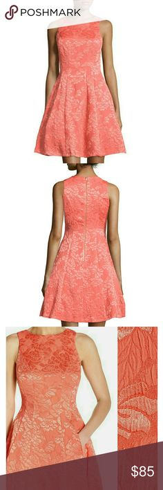 NWT MAGGY LONDON coral jaquard  dress New gorgeous dress by Maggy London. Thick jacquard damask fabric. Will add measurements shortly. NO TRADES Maggy London Dresses Midi