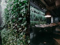 Incredible vertical garden wall brought life to the interior while printed on curtains and wooden bars 17&18th century paintings have defined a high level of aristocracy of the interior.