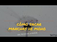 Cómo quitar manchas de moho. Tutorial de limpieza. Natural Cleaners, Clean House, Cleaning Hacks, Helpful Hints, Grande, Household Cleaners, Home Cleaning, Remove Mold Stains, Household Tips