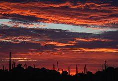 Sunrise in Cataviña, Baja California, Mexico.